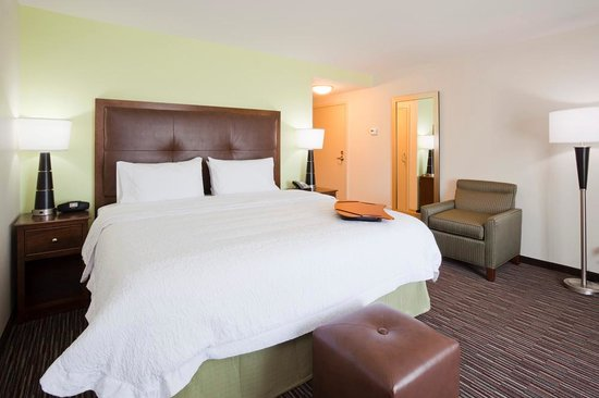 Hampton Inn & Suites Minneapolis / West-Minnetonka : Standard king room available with sleeper sofa or arm chair