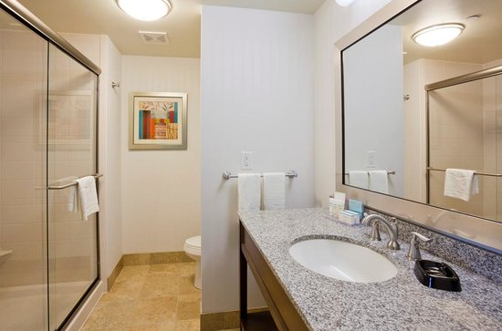 Hampton Inn & Suites Minneapolis / West-Minnetonka : Walk in showers or standard bath tubs available for convenience at the Hampton Inn & Suites Minn