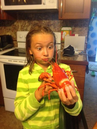 Falmouth Fish Market Inc.: Fresh lobster they steam and shell it for you