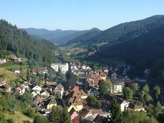 Schloss Hornberg Hotel: View from the hotel