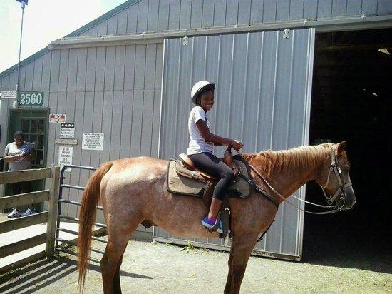 Massanutten Resort : horseback riding