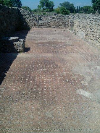 Templi Greci di Paestum: mosaici allo sbaraglio