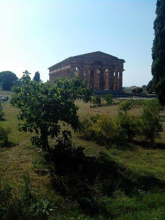 Templi Greci di Paestum: Tempio di Nettuno