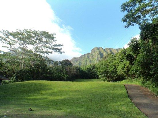 Ko'olau Golf Club: great view