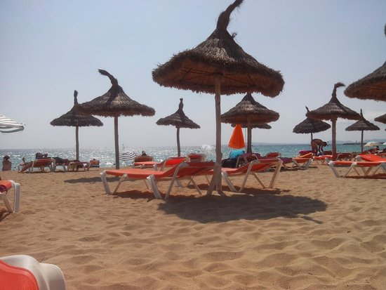 Java Hotel: spiaggia vicina all'hotel