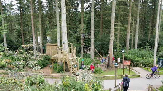 Center Parcs Longleat Forest: Zip wire