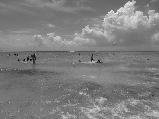 Hotel Riu Playacar : SUPER BEACH