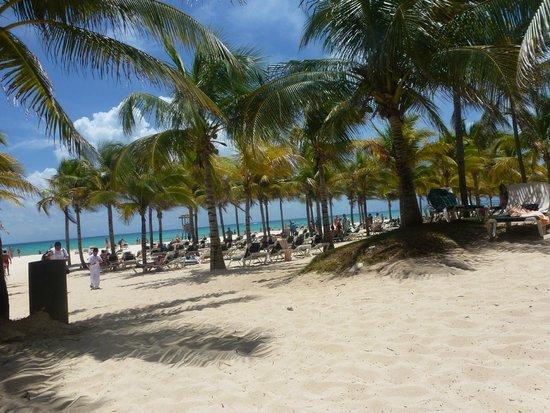 Hotel Riu Playacar: GOOD MORNING BEACH