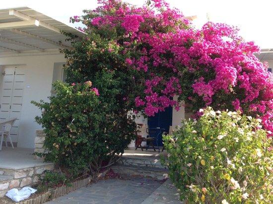 Paros Agnanti Resort: AH Colours