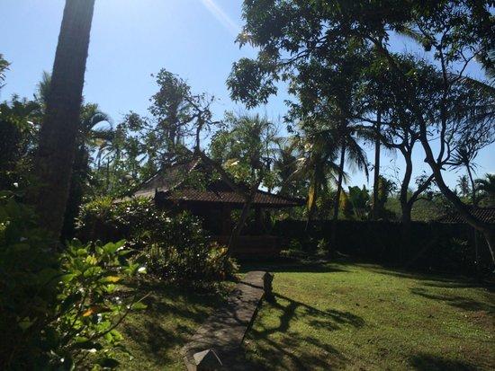 Gajah mina beach resort bungalow