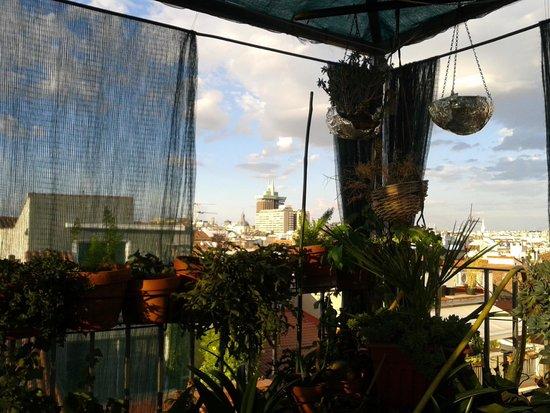 Dolce Vita: terrace view