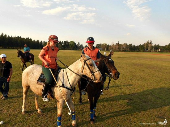 Argentina Polo Day : Horses and Polo!