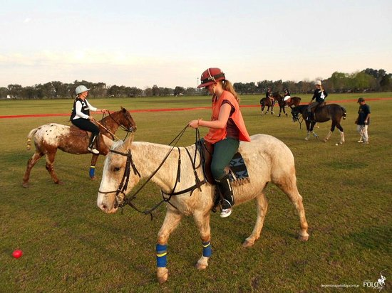Argentina Polo Day : My first ride in a horse polo