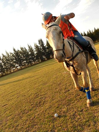 Argentina Polo Day : Playing Polo, in a beautiful Polo Day!