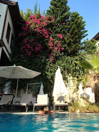 Dogan Hotel: Hotel Pool