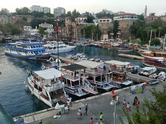 Dogan Hotel: Marina nearby