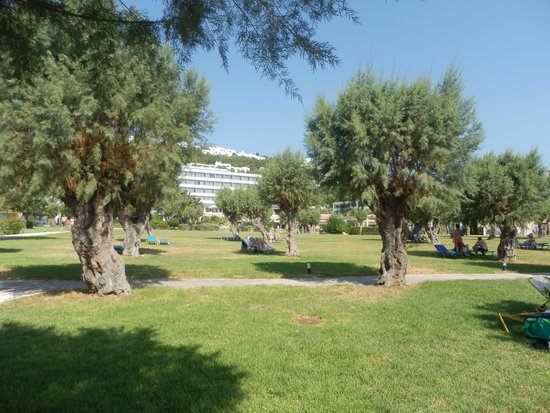 Grecotel Rhodos Royal : κηπος2