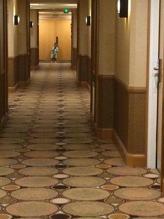 Hilton Paris Charles de Gaulle Airport : 8th Floor Corridor
