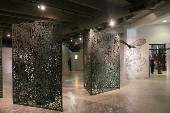 Museo de Bellas Artes Rene Brusau