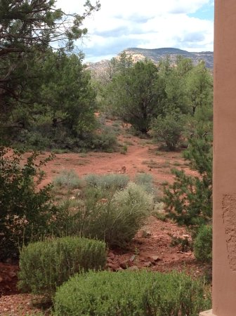Sedona Summit Resort: View from patio of Sunset Building, first floor unit.