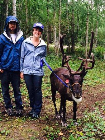 Running Reindeer Ranch: Photo op