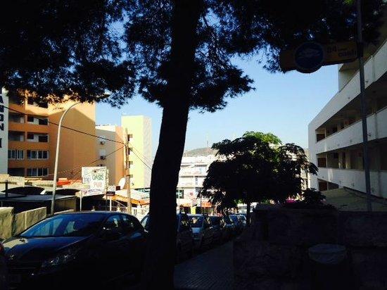 Trh Hotel Magaluf Tripadvisor