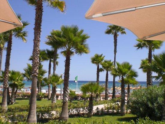 Hipotels Mediterraneo: Blick vom Pool aufs Meer