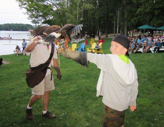 Shamrock Lodge: Birds of Prey Show