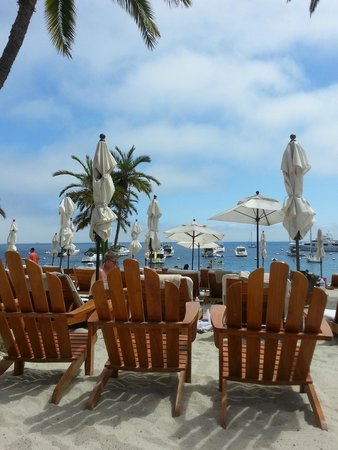 Descanso Beach Club: The view from our chairs at Descanso.