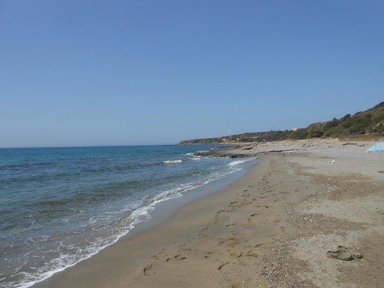 Horizon Studios : Beach, close to the hotel
