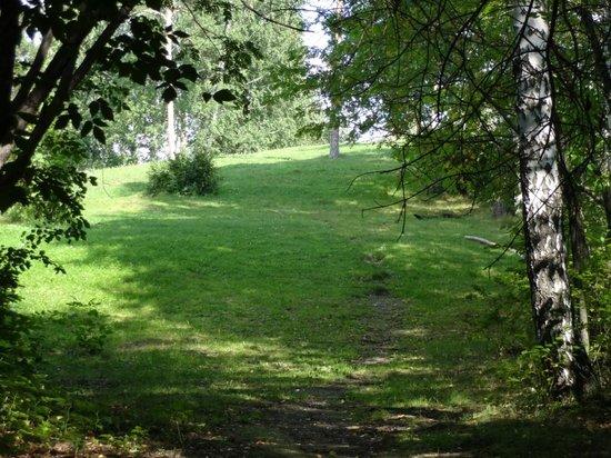 Osnovinskiy Park