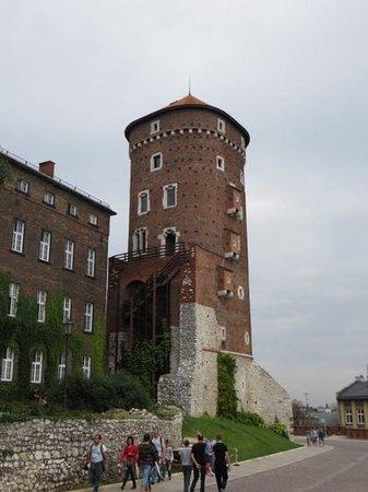Wawel Royal Castle: Tower
