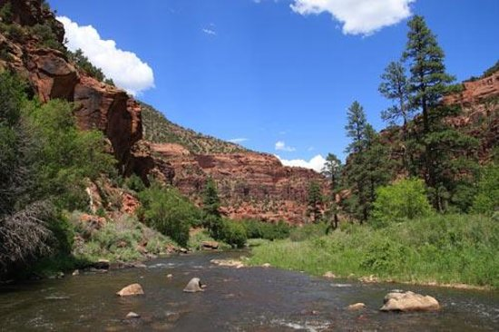 Dove Creek, CO: Dolores River Canyon 7 miles away