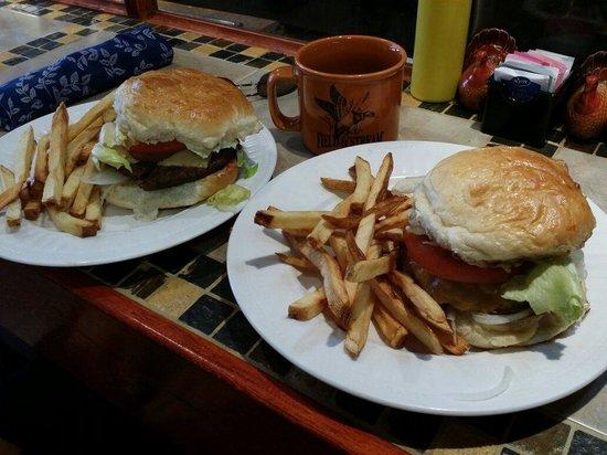 Hugo, CO : 1 Bison and 1 Beef burger!