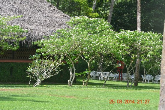 Marari Beach Resort : Restaurant