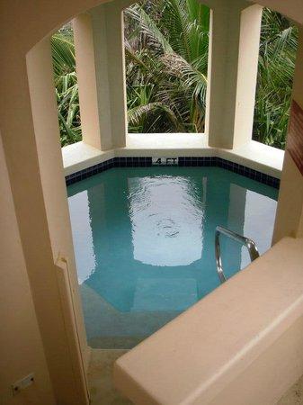 The Crane Resort: Private plunge pool