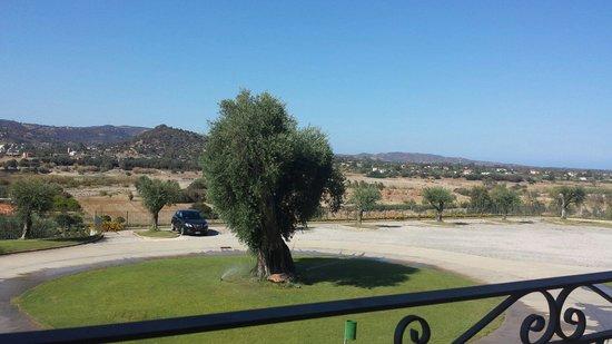 S'olia: Vista terrazza