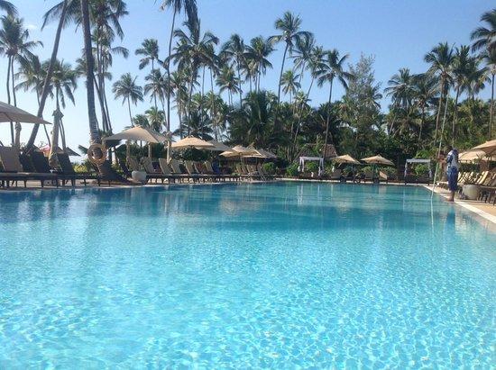 Dream of Zanzibar: Olympic size pool