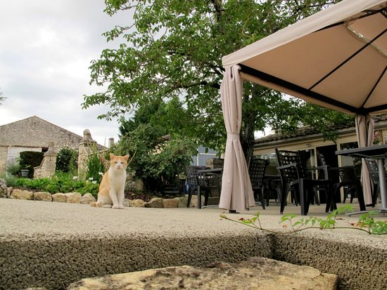 Domaine les Jourdis : The patio - where breakfast is served, etc.