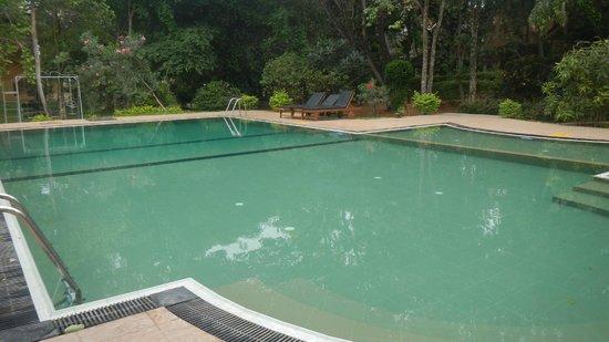 Pelwehera Village Resort: Piscina