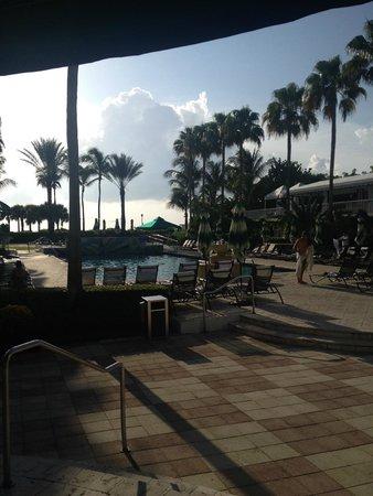 Kimpton Surfcomber Hotel : piscina