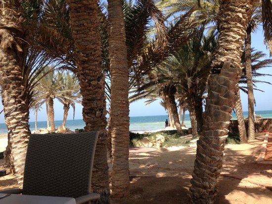 Odyssee Resort & Thalasso : vue depuis le restaurant de la plage