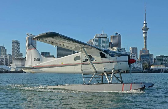 Auckland Seaplanes Ltd: Seaplane in Auckland Harbour