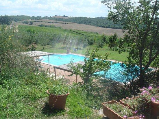 Agriturismo Il Casalone : la piscine avec vue sur la campagne toscane ...