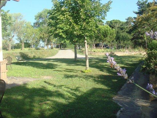Agriturismo Il Casalone: Espace vert juste devant l'appartement