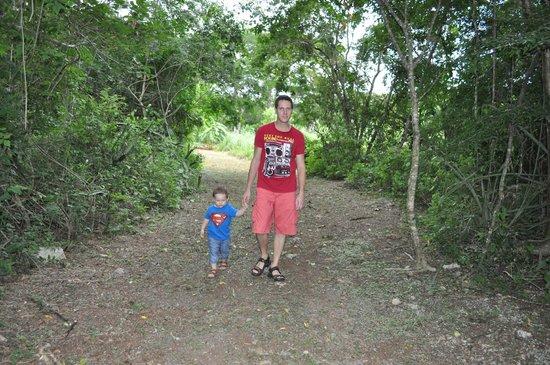 Hacienda Chichen: We loved it