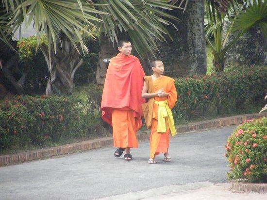 Old Quarter Luang Prabang : Monks