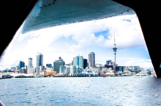 Auckland Seaplanes Ltd: Auckland skyline from the seaplane