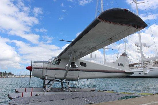 Auckland Seaplanes Ltd: Seaplane in Dock