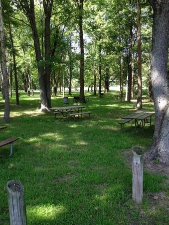 Lewistown, IL: Picnic Area